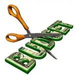 budgetcutbig