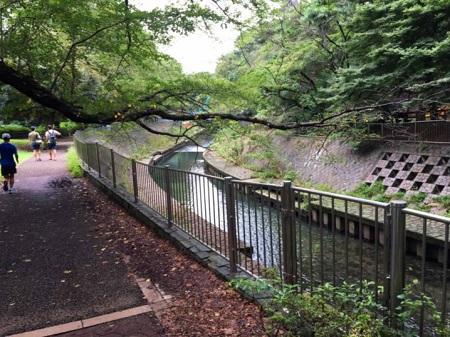 wadabori-park14