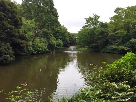 wadabori-park9
