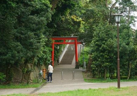 tomiokahachiman-park3