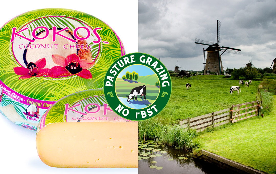 kokos gouda grass fed