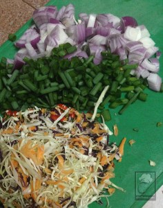 cheffinitup-flavali-cocosoy-meat-fry2