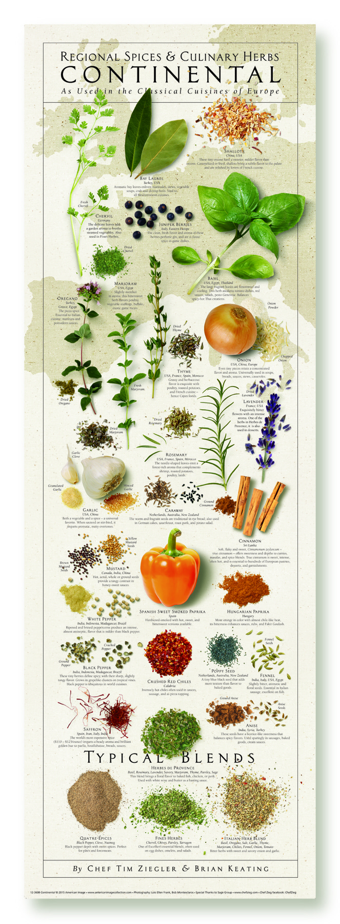 Poster Cuisine The American Kitchen Spices Print Series