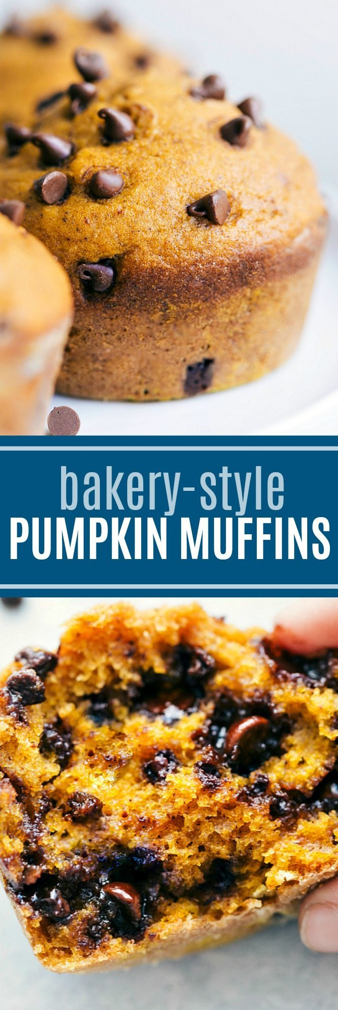 Barefoot Contessa Pumpkin Muffins Pumpkin Chocolate Chip Muffins Chelsea S Messy Apron