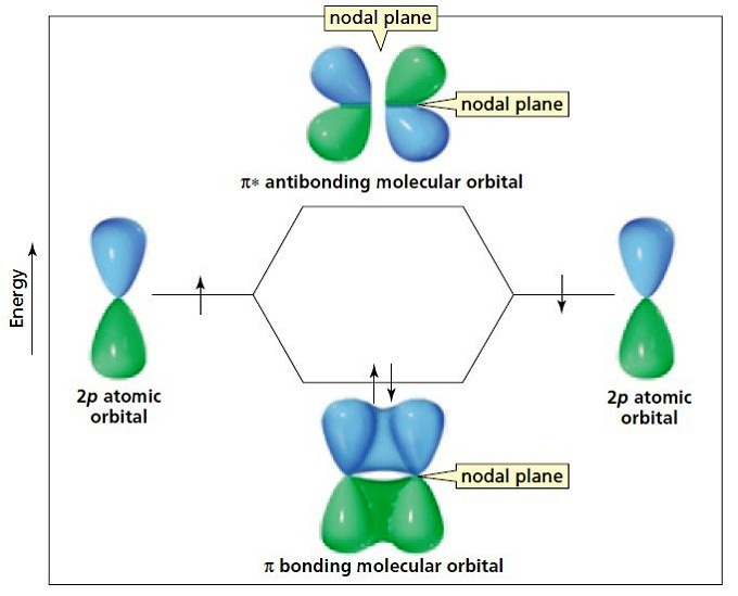 Molecular orbital  A molecule in which all the electrons are paired