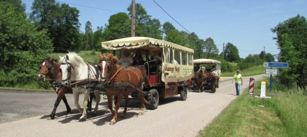 chariot-resto unique dans la region