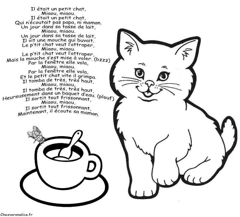 Les activit s archives chez veronalice - Image de petit chat ...