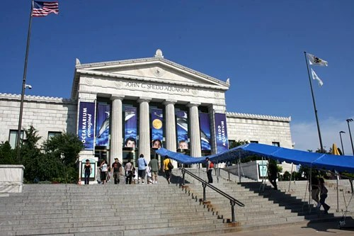 Shedd Aquarium Implements Energy Conservation Plan | Chicago Tonight