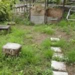 除草剤いらず!熱湯で雑草を枯らす方法