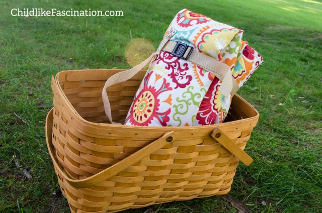 Ready for a Picnic!