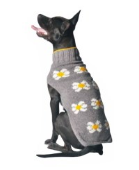 Daisy Dog Sweater - Chilly Dog Sweaters