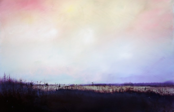 Daniel Chester at the Chimera Gallery, Mullingar, Co Westmeath , Ireland