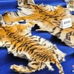 poacher-yunnan-002