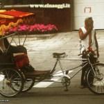 Beijing Rickshaw II