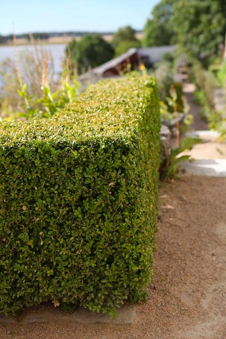 lacko-slatt-upper-garden-10
