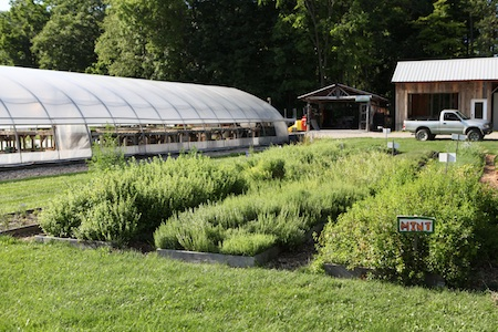 shelburne farms market garden 12