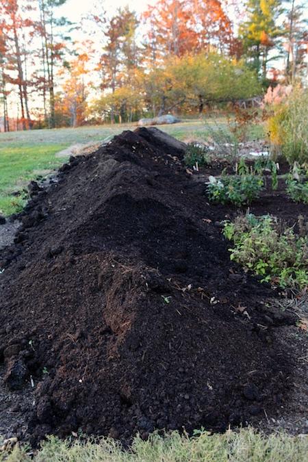 mulching-the-garden-in-fall-1
