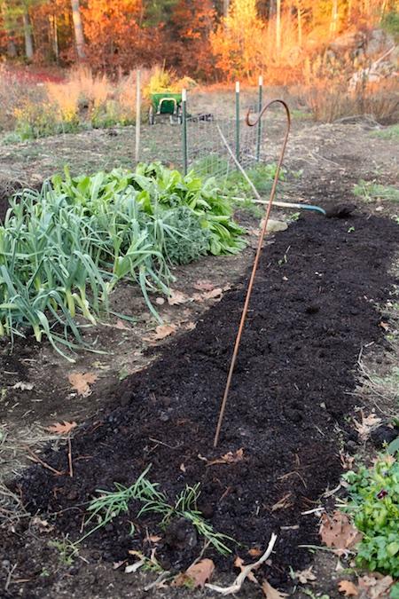 mulching-the-garden-in-fall-2