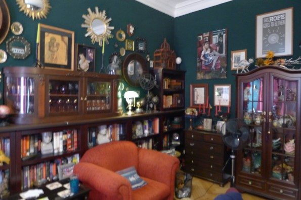 Suzanne Forbes decor library