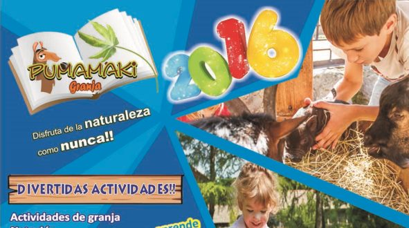 cursos-vacacionales-cumbaya
