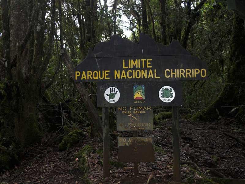Chirripo San Jeronimo