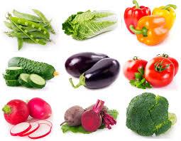 Alimentação Saudável de 0 a 12 meses