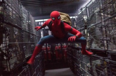 Homem-Aranha no MIS