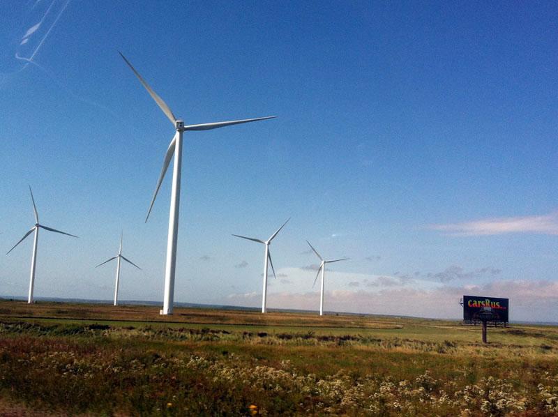 The Windmills