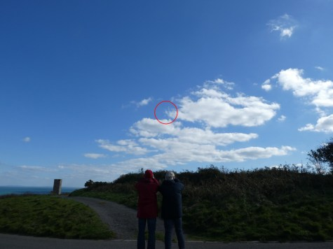 Ray & Ali trying to count choughs several hundred feet high