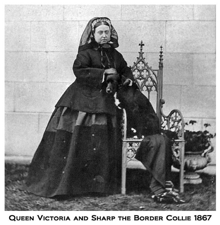 Queen Victoria Married ... TO ACCESS T...