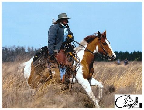 Horseback Riding Pasco Tampa Bay Florida