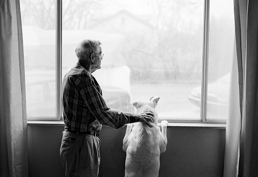 Grandpa And His Dog Looking Out The Window Together
