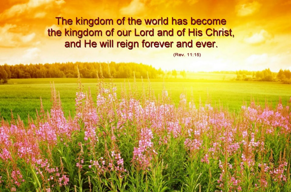 The Yellow Wallpaper Power Struggle Quotes Scripture For The Day Looking Towards God S Kingdom