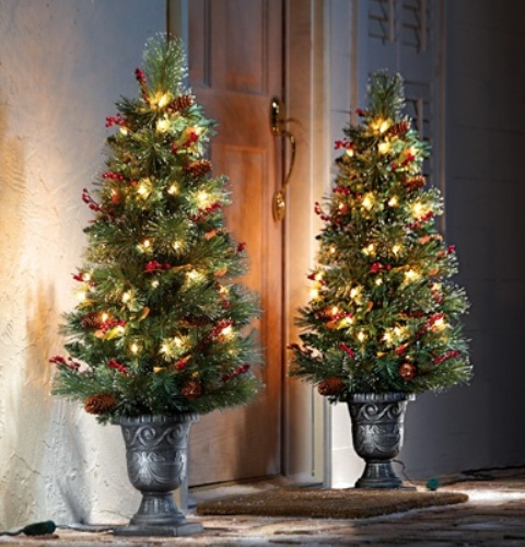 small outdoor christmas trees - Rainforest Islands Ferry - small decorated christmas trees