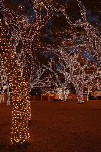 Simple outdoor christmas light decorating ideas for Simple christmas light decoration ideas