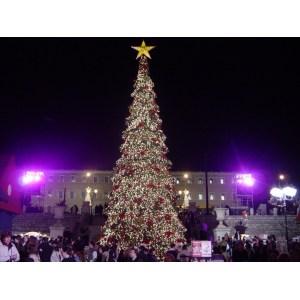 particular lights big tree outdoor decoration 2014 outdoor tree decorating ideas tree outdoor tree ornament outdoor