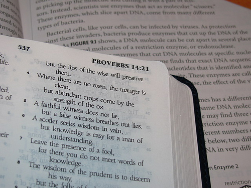 Insights on Leadership from the Book of Proverbs