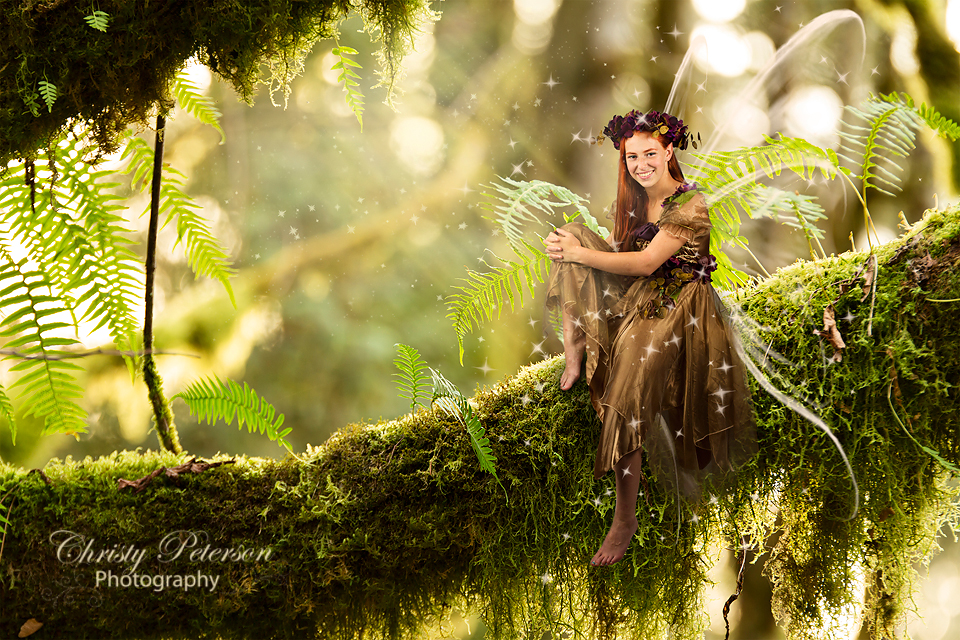 Light Fairy Digital Background and Overlay Set Christy Peterson