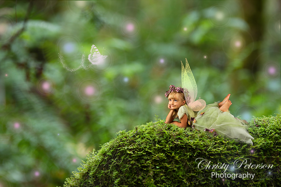 Fall Woodland Creatures Wallpaper Mossy Bed Christy Peterson
