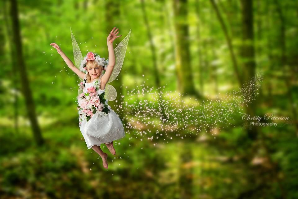 3d Baby Girl Wallpaper Digital Fairy Wing Brushes And Png Overlays Christy Peterson