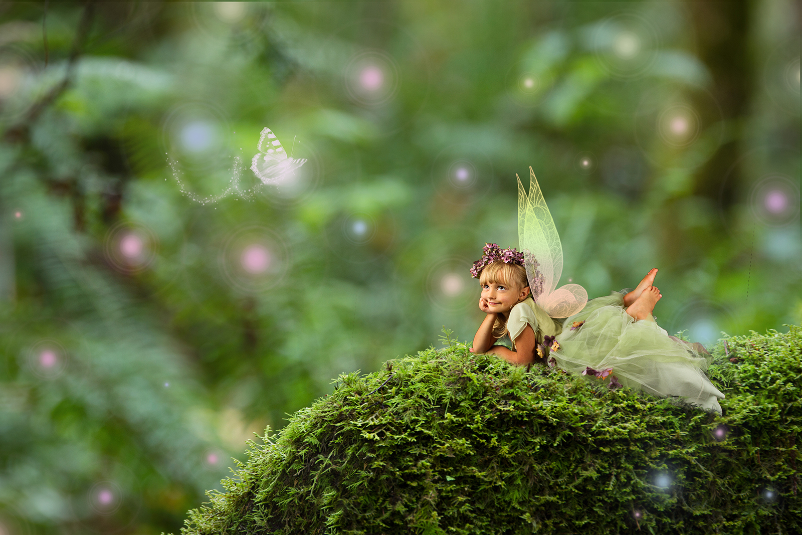 Fall Woodland Creatures Wallpaper My Favorite Digital Backgrounds For Fairy Composite