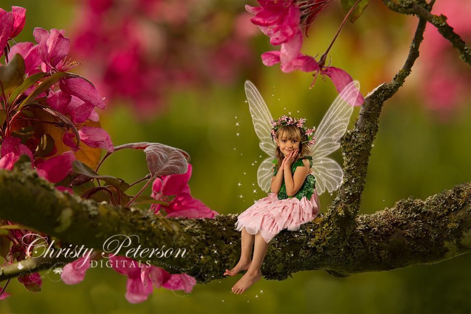 My Favorite Digital Backgrounds for Fairy Composite Pictures
