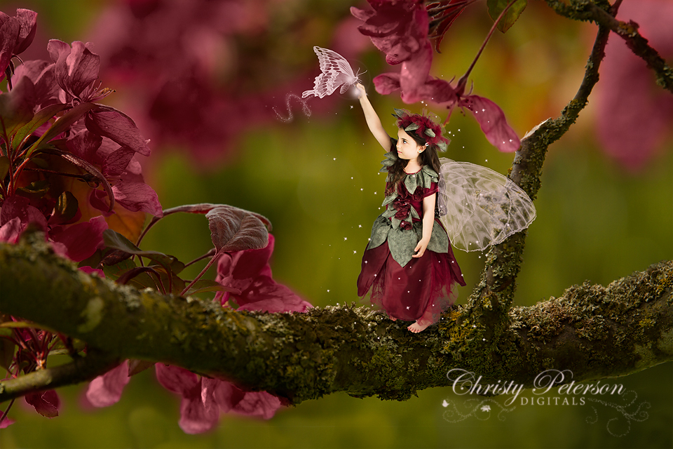 Steampunk Fairy Wings Overlays And Digital Background Set Auto