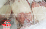 Mực 1 nắng Nha Trang mua bán ở đâu ngon – giá bao nhiêu 1kg