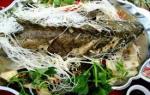 Hải sản tươi sống – cá mú hấp kiểu HongKong cực ngon