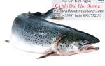 Giá cá hồi Đại Tây Dương – công thức các món ăn từ cá hồi thơm ngon