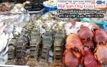 Bí quyết mua hải sản tươi sống tại Thái Bình cực ngon