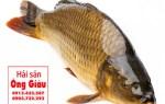 Cá chép giòn giá rẻ tại TpHCM – giao hàng tận nơi