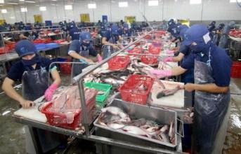 Mở rộng cấp chứng thư điện tử cho lô hàng thủy sản xuất khẩu