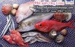 Hải sản tươi sống tại Hải Dương đảm bảo chất lượng